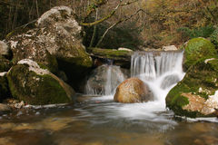 Water falls. Cascade in the medium of nature Royalty Free Stock Image
