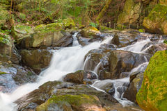 Water falls. Water falls over a jumble of moss-covered boulders in forest royalty free stock photos