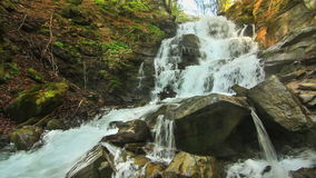 Water falls over rocks through the dense fern undergrowth of a Carpathian forest. Water falls over rocks through the dense fern undergrowth of a forest stock video footage