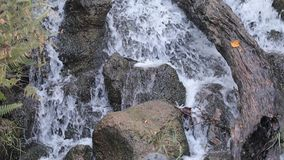 Water falls stock video