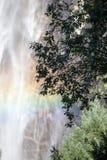 Water falls in Yosemite Stock Image