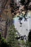 Water falls in Yosemite Royalty Free Stock Photo