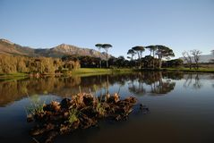 Water feature Cape Town. Water feature on Cape Town Golf course Royalty Free Stock Photo