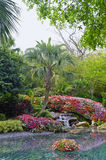 Water feature in pond. Pond water feature in landscaped tropical garden stock image