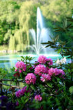 Water Feature Royalty Free Stock Images