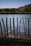 Water fence Stock Image