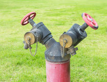 Water Fire Hydrant Red. Color on the green field Royalty Free Stock Image