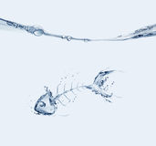 Water Fishbone Sinking Royalty Free Stock Photography