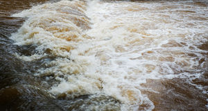 Water Flood. From Mountain after Heavy raining royalty free stock photography