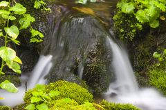 Water Flow. Waterflow accented by green foliage Royalty Free Stock Image