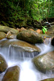 Water flow. Amazing tropical rain forest landscape with water flow and balancing rocks tower for zen meditation practice. Nature background. long expose image Stock Images