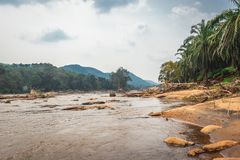 Water flow of athirapally waterfall with green forests royalty free stock image