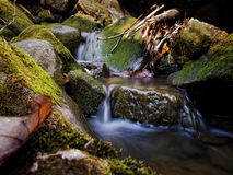 Water Flow. S gently over moss-covered rocks in a wooded setting Royalty Free Stock Image
