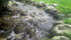 Water flow from little creek in the forest, selective focus stock footage