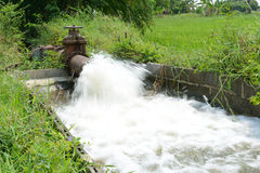 Water for agriculture. Water flow out into canal and going to the other farm stock photo