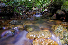A water flow on the river in the tropical forest Royalty Free Stock Images