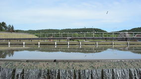Water flow sedimentation Stock Image