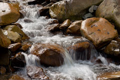 Water flow (stream) among the stones. Mountain stream of clean water among the stones Royalty Free Stock Images
