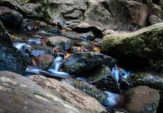 The water flow and time Royalty Free Stock Photos