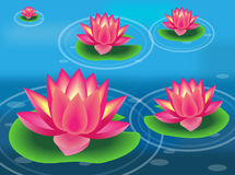 Water flower and lily pad. Vector illustration of water flower and lily pad Stock Photography