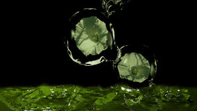 Water flowers. Flowers in water balls falling into water. Colors in green. 3d illustration royalty free illustration