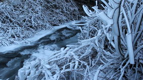 Water Flowing along Frozen Creek or Stream on the base of Waterfall in Portland Oregon 1080p Stock Photo