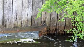 Water flowing in the creek. Under a wooden wall stock video