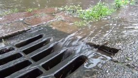 Water flowing into drain stock video