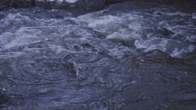 Water flowing and floating in river with good sound stock footage
