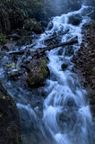 Water flowing through the forest over moss covered rocks at spri Stock Images