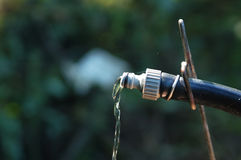 Water flowing from a garden hose pipe on blurry greenery background Stock Photography
