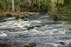 Water flowing in Hillsborough river. Taken in Tampa, Florida. The Hillsborough River is a river located in the state of Florida in the USA. It arises in the Stock Photo
