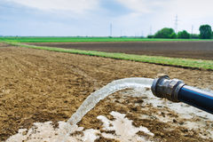 Water flowing from hose in the field stock images