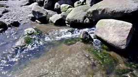 Water flowing from large boulders stock video
