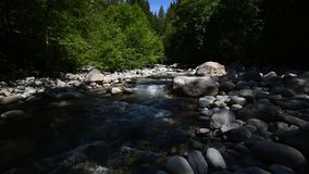 The water flowing through Lynn Creek. With sound. The water flowing through Lynn Creek.During the summer time, many people visit Lynn Canyon in order to relax stock footage