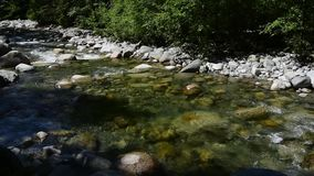 The water flowing through Lynn Creek.With sound. The water flowing through Lynn Creek.During the summer time, many people visit Lynn Canyon in order to relax stock video