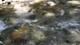 The water flowing through Lynn Creek. With sound. The water flowing through Lynn Creek.During the summer time, many people visit Lynn Canyon in order to relax stock video