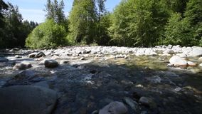 The water flowing through Lynn Creek.  2. The water flowing through Lynn Creek.During the summer time, many people visit Lynn Canyon in order to relax, have fun stock video footage