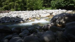 The water flowing through Lynn Creek. During the summer time, many people visit Lynn Canyon in order to relax, have fun, or simply cool themselves off in the stock video footage