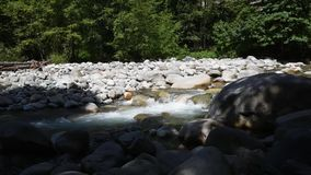 The water flowing through Lynn Creek. During the summer time, many people visit Lynn Canyon in order to relax, have fun, or simply cool themselves off in the stock video