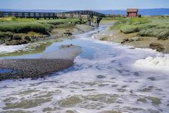 Water flowing through the marshes of Don Edwards wildlife refuge. Wooden Walkway and Picnic Shelter in the background, Fremont, San Francisco bay area Stock Images