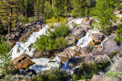 Water Flowing From Melting Snow In Mountains Royalty Free Stock Images