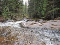 Disrupted waters. Water flowing through the mountains of Nederland royalty free stock photo