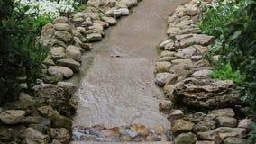 Water flowing movie. Nice landscapes  design in Arboretum, water flowing cross field  video stock footage