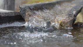 Water flowing in old groove stock video