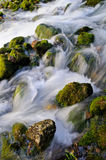 Water flowing over mossy rocks Stock Photos