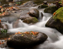Water Flowing Over Rocks and Boulders Stock Image