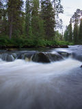 Water flowing over rocks on forest background Stock Photos