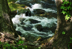 Water Flowing Over Rocks in Forest Stream. Water flows over mossy rocks in a fast moving brook in a forest in northern NJ Stock Photography
