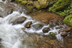 Water Flowing Over Rocks in a Mountain Creek. Mull Creek in North Carolina, water flowing over the rocks. lush green spring foliage stock image